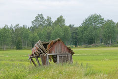 Tumbledown barn on a field. Trees in the background Stock Image
