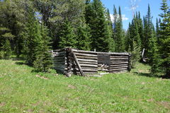 A tumbledown log cabin in the mountains. A roofless, abandoned home from gold-rush days in the mountains of wyoming Royalty Free Stock Images