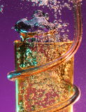 Tumbler do partido com airbubbles Fotografia de Stock