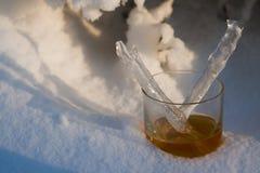 tumblerwhisky Royaltyfri Fotografi