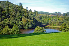 Tumbleton Lake. View over Tumbleton lake surrounded by forest Stock Photography