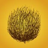 Tumbleweed drawing vector Royalty Free Stock Image
