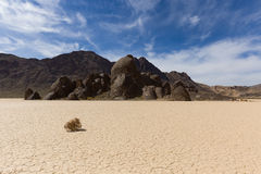 Tumbleweed on dry lake floor with cracked mud Royalty Free Stock Images