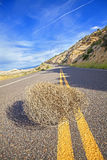 Tumbleweed on an empty road. Tumbleweed on an empty road, travel concept picture, shallow depth of field, USA Stock Image