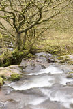 Tumbling Down. The river course flows down a gentle gradient but because there has been a lot of rain in winter the water gushes over the rocks eager to move on royalty free stock photography