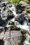 Tumbling Mountain Stream Royalty Free Stock Images