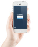 Tumblr Login page on Apple iPhone screen. SIMFEROPOL, RUSSIA - JULY 06, 2014: Tumblr Login page on Apple iPhone screen. Tumblr is a microblogging platform and Royalty Free Stock Photography