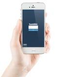Tumblr nazwy użytkownika strona na Jabłczanym iPhone ekranie Fotografia Royalty Free