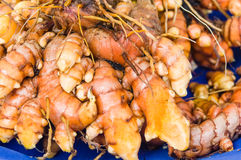 Tumeric root on display at the market Stock Images
