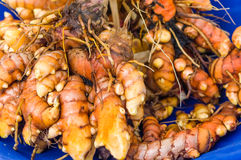 Tumeric root on display at the market Stock Photo