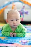 Tummy Time. 5 Month Old baby portrait of baby looking into camera doing tummy time Royalty Free Stock Photo