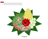 Tumpeng or Indonesian Cone Shaped Rice with Assorted Food Royalty Free Stock Image