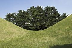 Free Tumuli Park, South Korea Royalty Free Stock Photo - 11818015