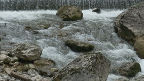 Tumultuous River with Rocks. Close up shot of tumultuous and foamy water stream flowing  through rocks, on the mountains stock video footage
