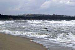 Tumultuous waves,blue sea Royalty Free Stock Image