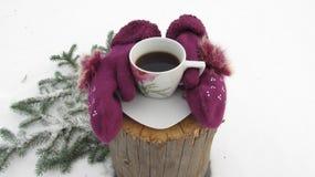 Tumvanten håller kaffe i vintern på snö Arkivfoton