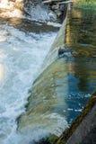 Tumwater faller vattengardin 3 Arkivfoton