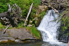Tumwater Falls Royalty Free Stock Photography