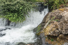 Tumwater Falls Section Royalty Free Stock Photos