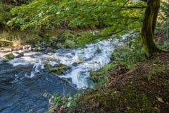 Tumwater-Fluss-Stromschnellen Lizenzfreies Stockfoto