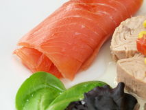 Tuna Royalty Free Stock Photos