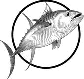Tuna. Black and white illustration of tuna engraving style. Round frame can be easily removed Stock Photo