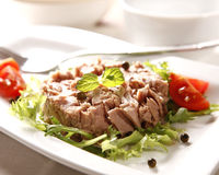 Tuna. Very tasty tuna salad with spices stock photos