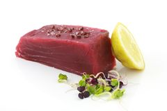 Free Tuna  Stock Photography - 2823312