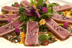 Tuna Royalty Free Stock Photo