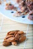 Tuna and Almonds with Vinegar Glaze Stock Photography