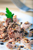 Tuna and Almonds with Vinegar Glaze Royalty Free Stock Photos