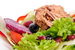 Tuna And Vegetable Salad Royalty Free Stock Photography