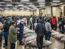 Tuna Auction Stock Foto