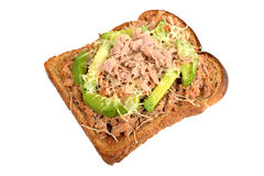 Tuna and Avocado Melt on Toast Royalty Free Stock Images