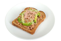 Tuna and Avocado Melt on Toast Stock Photo