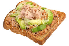 Tuna and Avocado Melt on Toast Royalty Free Stock Image