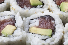Tuna and Avocado Sushi Rolls Stock Photography
