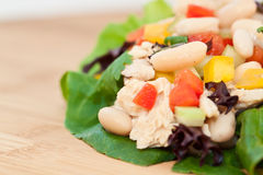 Tuna and Bean Salad Stock Photo
