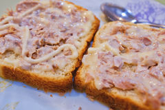 Tuna bread. In the dish Royalty Free Stock Images