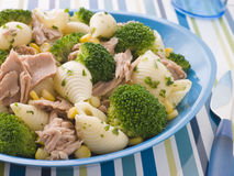 Tuna and Broccoli Pasta Shells Stock Photography