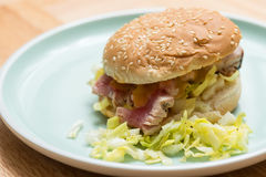 Tuna Burger royalty-vrije stock fotografie