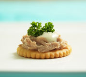 Tuna Canape Royalty Free Stock Photography