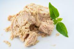 Tuna Canned-Lebensmittel Stockfotos