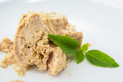 Tuna Canned-Lebensmittel Lizenzfreie Stockbilder