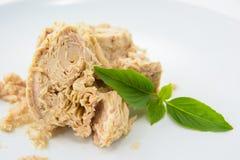 Tuna Canned mat royaltyfria bilder