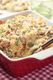 Tuna casserole Royalty Free Stock Photos