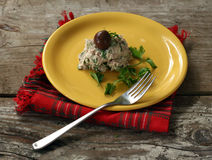 Tuna cheese and parsley salad Royalty Free Stock Photography