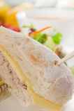 Tuna and cheese sandwich with salad Stock Photo