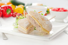 Tuna and cheese sandwich with salad Royalty Free Stock Photo