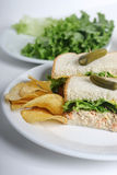 Tuna and Chips. Tuna sandwich with chips Royalty Free Stock Photo